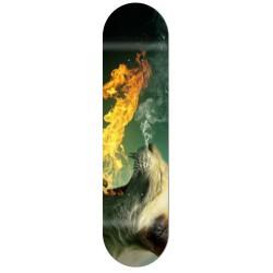 Skate personnalisé félin cracheur de feu